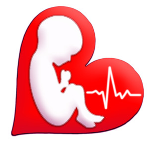 Health & Fitness - Baby Beat™ Fetal Heart Rate Monitor - BazilSoft