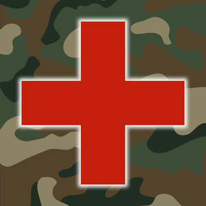 Health & Fitness - Army First Aid - Double Dog Studios